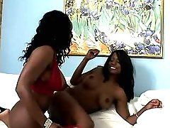 Saucy ebony dolls having fun in bed ebony lesbian sex